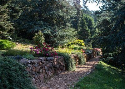 folly-arboretum